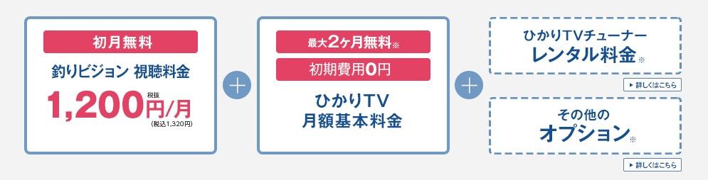 ひかりTVで釣りビジョンを見た料金を説明